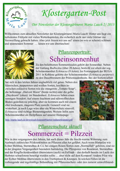 Newsletter Nr. 04/2013 (pdf, 653 KB)